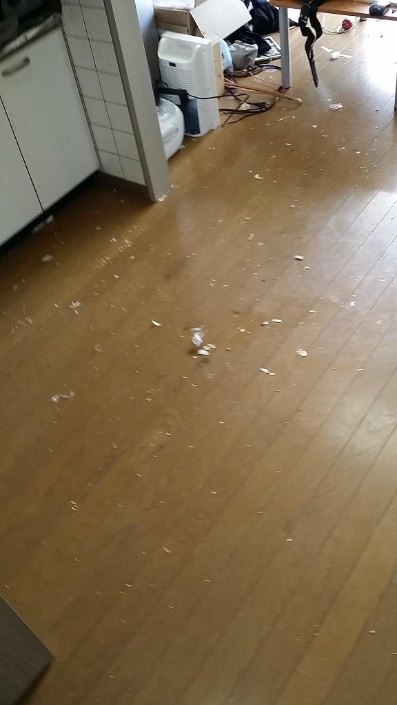 【薩摩川内市】大量の家庭ごみの回収